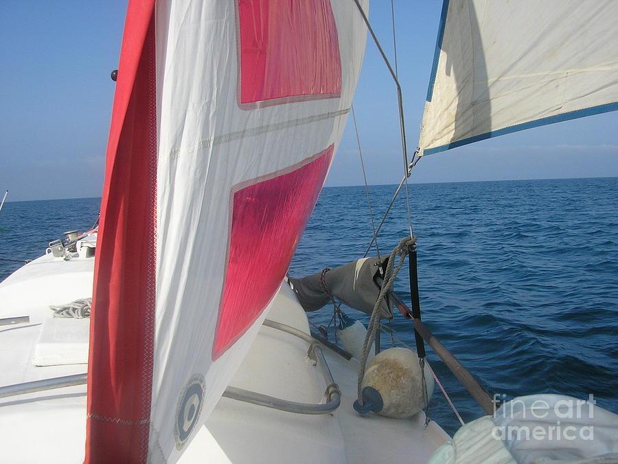 Sunpearl High Seas Photograph