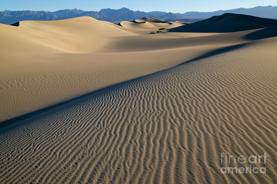 Sunrise At Mesquite Flat Sand Dunes Photograph
