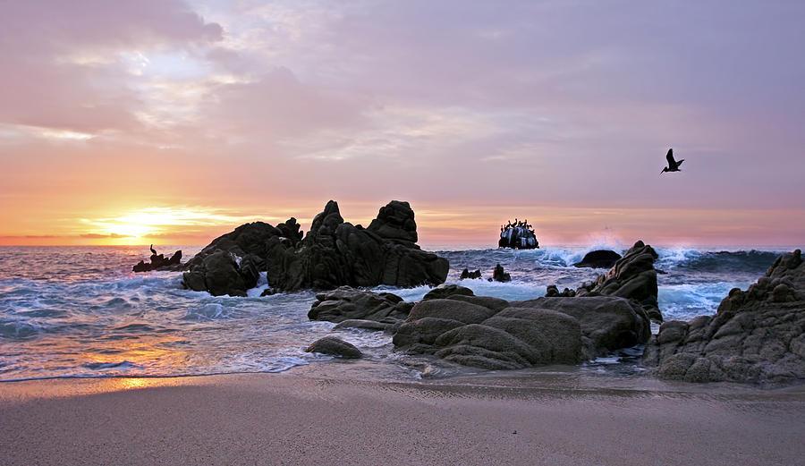 Landscape Photograph - Sunrise In Cabo San Lucas by Marcia Colelli