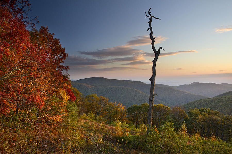 Sunrise In Shenandoah National Park Photograph