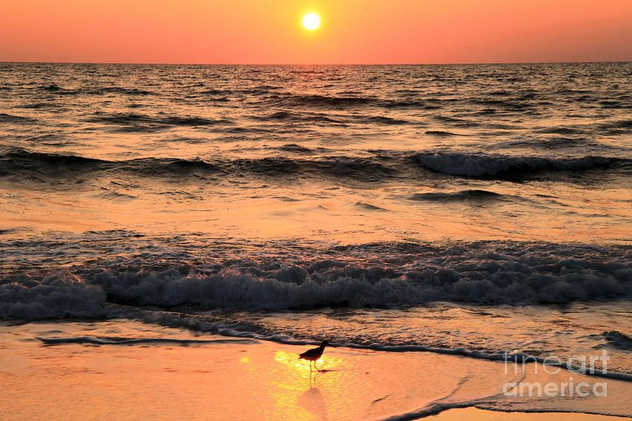 Sunset At St. Joseph Photograph  - Sunset At St. Joseph Fine Art Print