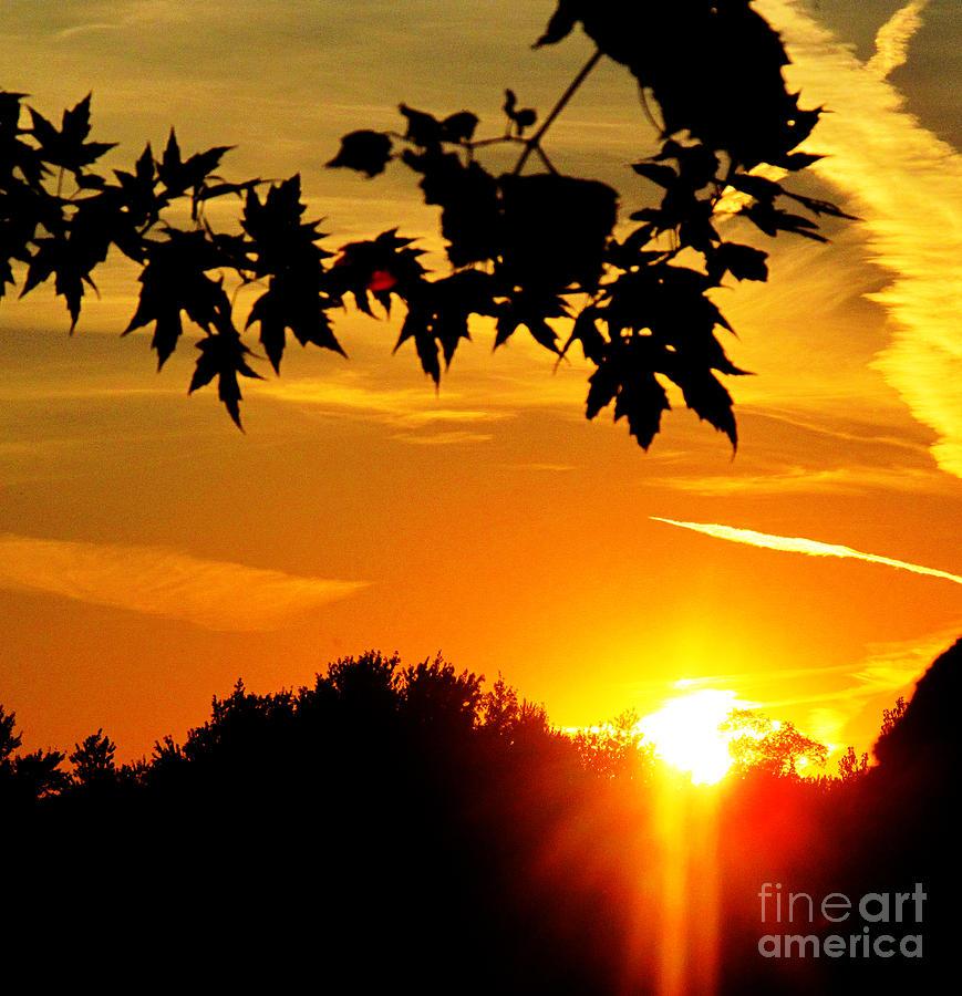 sunset AUSTIN Photograph