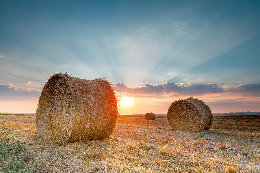 Sunset Bales Photograph