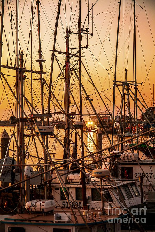 Sunset boat masts at dock morro bay marina fine art for Fine art photography sales
