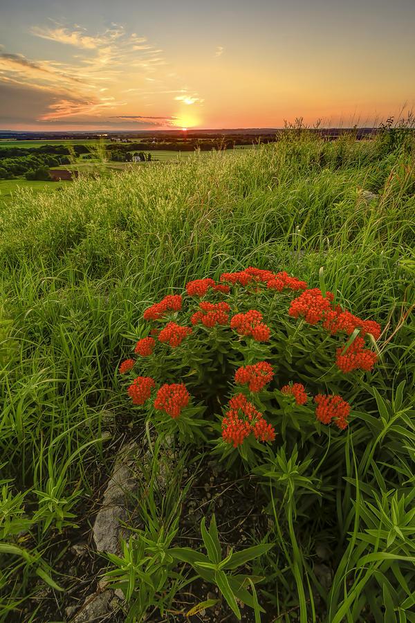 Sunset In The Flint Hills Photograph