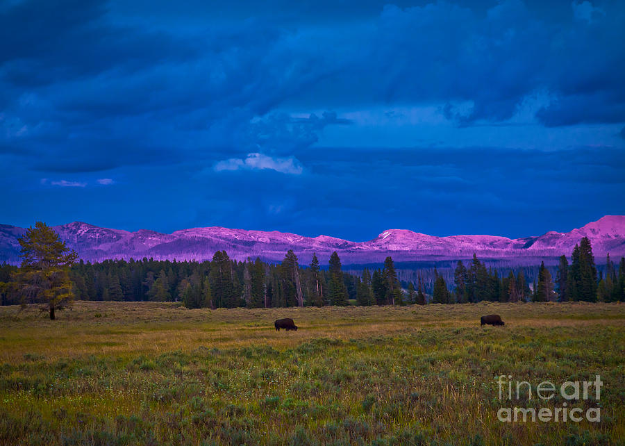 Sunset In Yellowstone Photograph