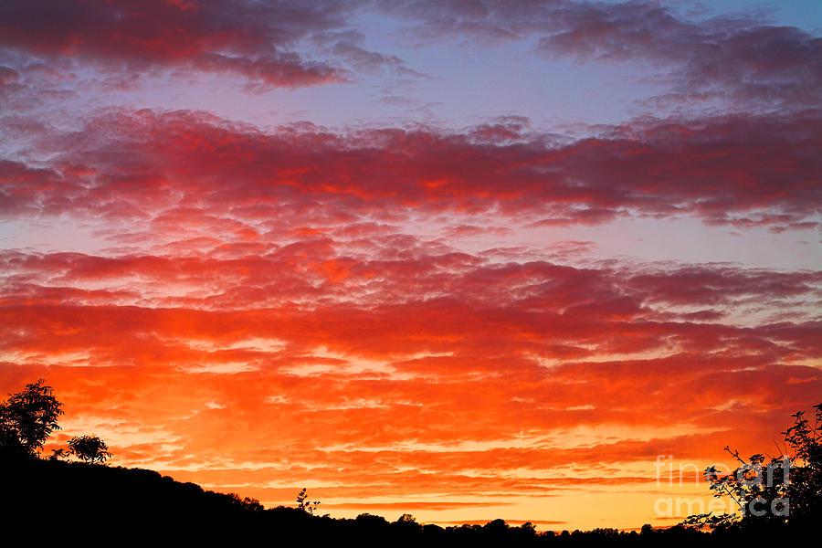 Sunset Photograph - Sunset by Natalie Kinnear