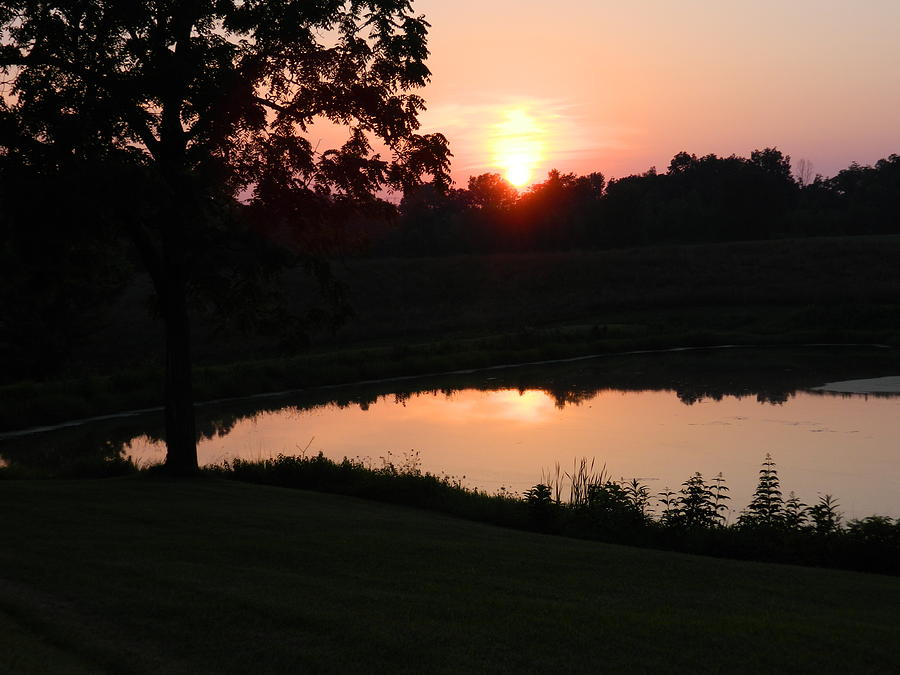 Sunset Photograph - Sunset On A Pond by Linda Brown