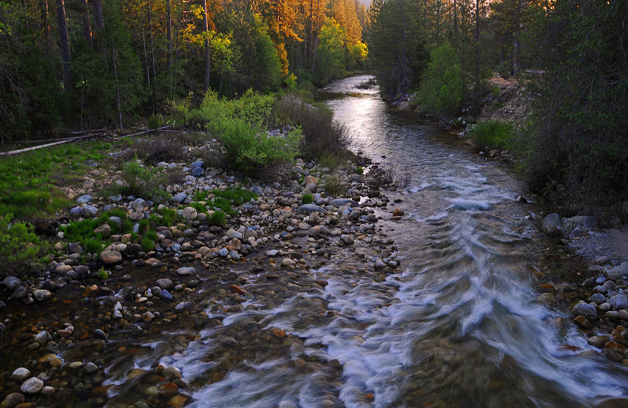 Merced Photograph - Sunset On The Merced by Lynn Bauer