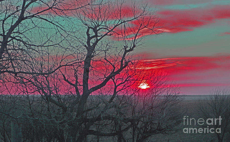 Sunset Red Photograph