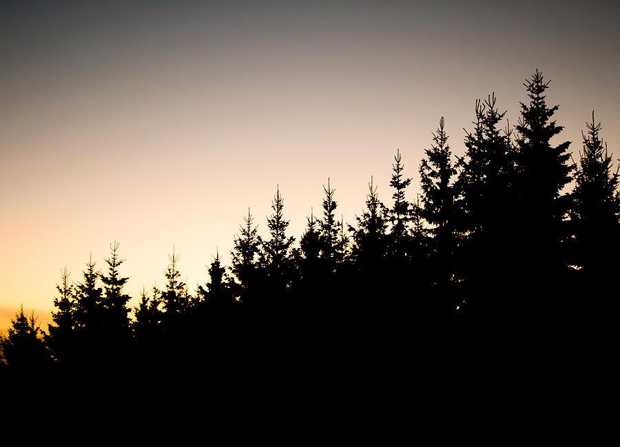 Sunset Photograph - Sunset by Robert Hellstrom