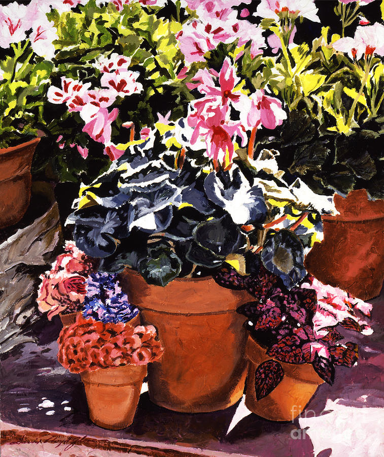 Sunshine And Flowerpots Painting