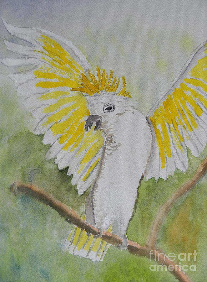 Suphar Crested Cockatoo Painting