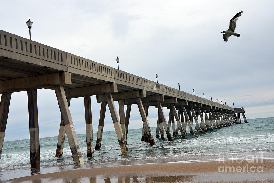 Surreal Blue Sky Ocean Coastal Fishing Pier Seagull North Carolina Atlantic Ocean Photograph