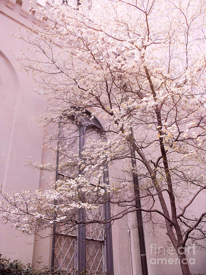 Surreal Dreamy Church Window With Pink Trees Photograph