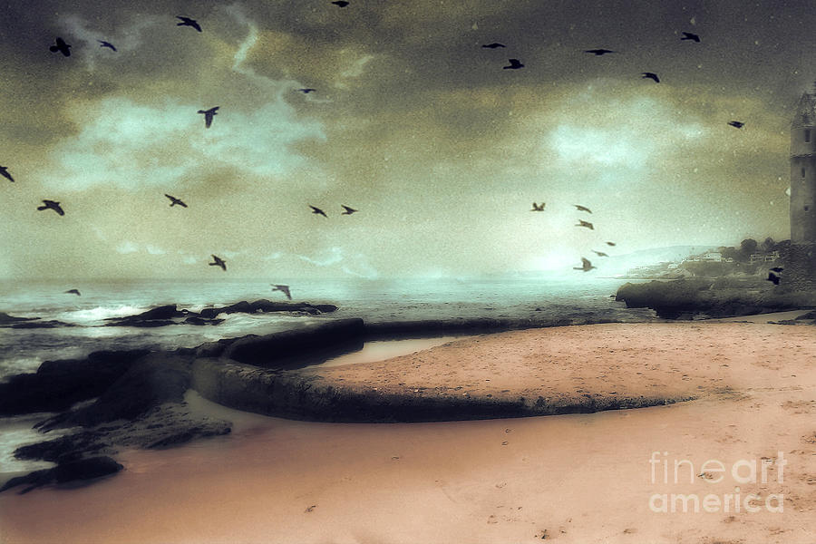 Surreal Dreamy Ocean Beach Birds Sky Nature Photograph