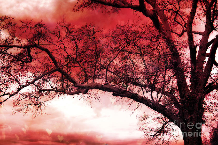 Surreal Fantasy Gothic Red Tree Landscape Photograph