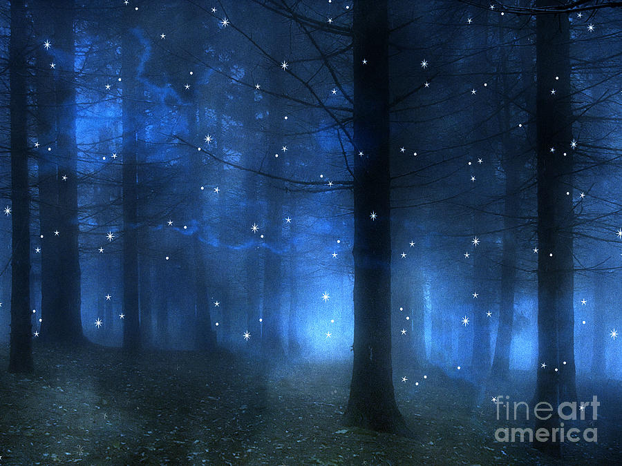 Surreal Fantasy Haunting Blue Sparkling Woodlands Forest Trees With Stars - Starlit Fantasy Nature Photograph