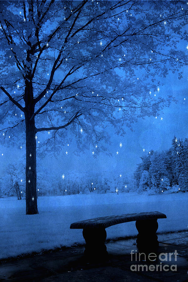 Surreal Fantasy Winter Blue Tree Snow Landscape Photograph