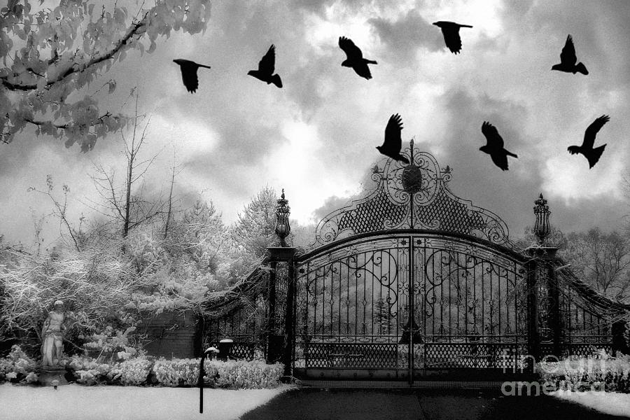 Surreal Gothic Black And White Gate With Flying Ravens