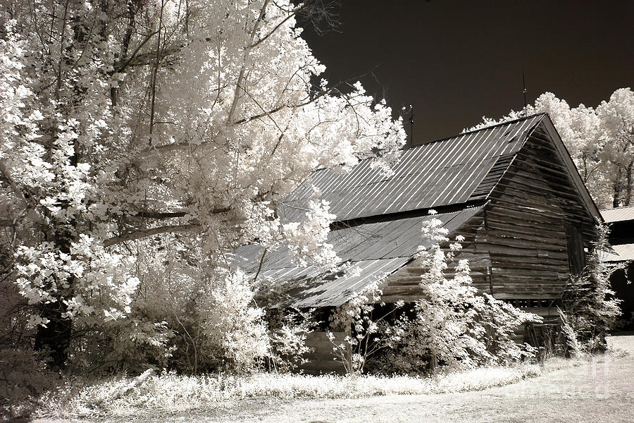 Surreal Infrared Sepia Barn Farm Landscape Photograph  - Surreal Infrared Sepia Barn Farm Landscape Fine Art Print