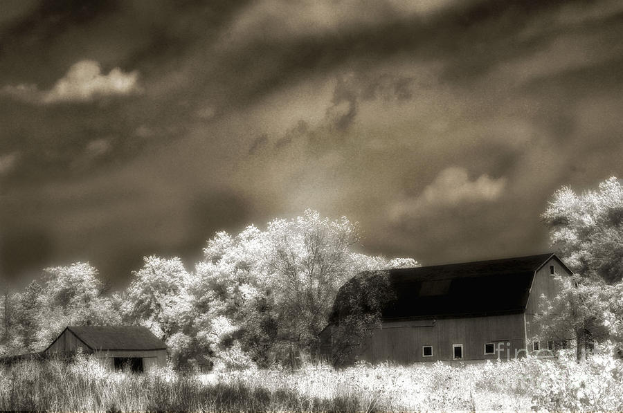Surreal Infrared Sepia Rural Barn Landscape Photograph  - Surreal Infrared Sepia Rural Barn Landscape Fine Art Print