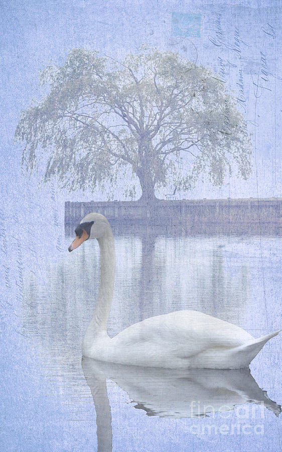 Swan Lake By A Tree Mixed Media