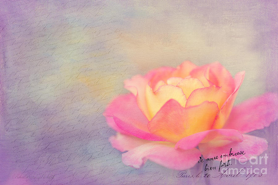 Sweet Are The Memories Photograph  - Sweet Are The Memories Fine Art Print