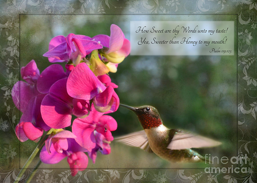 Nature Photograph - Sweet Pea Hummingbird Iv With Verse by Debbie Portwood