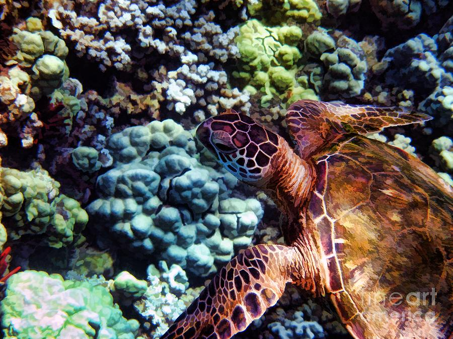 Painterly Photograph - Swimming With A Sea Turtle by Peggy J Hughes