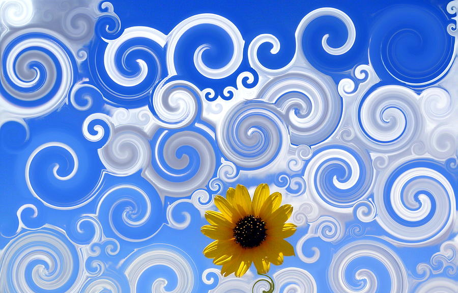 Swirly Sky Sun Flower Photograph  - Swirly Sky Sun Flower Fine Art Print