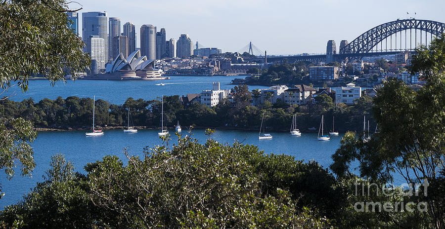 Sydney Harbour Photograph