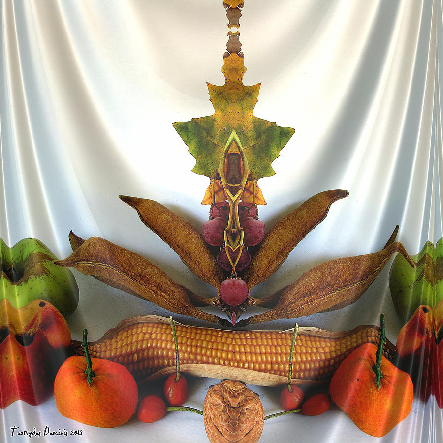 Symmetric Life. Two Ripe Tangerine. 2013 80/80 Cm.  Digital Art