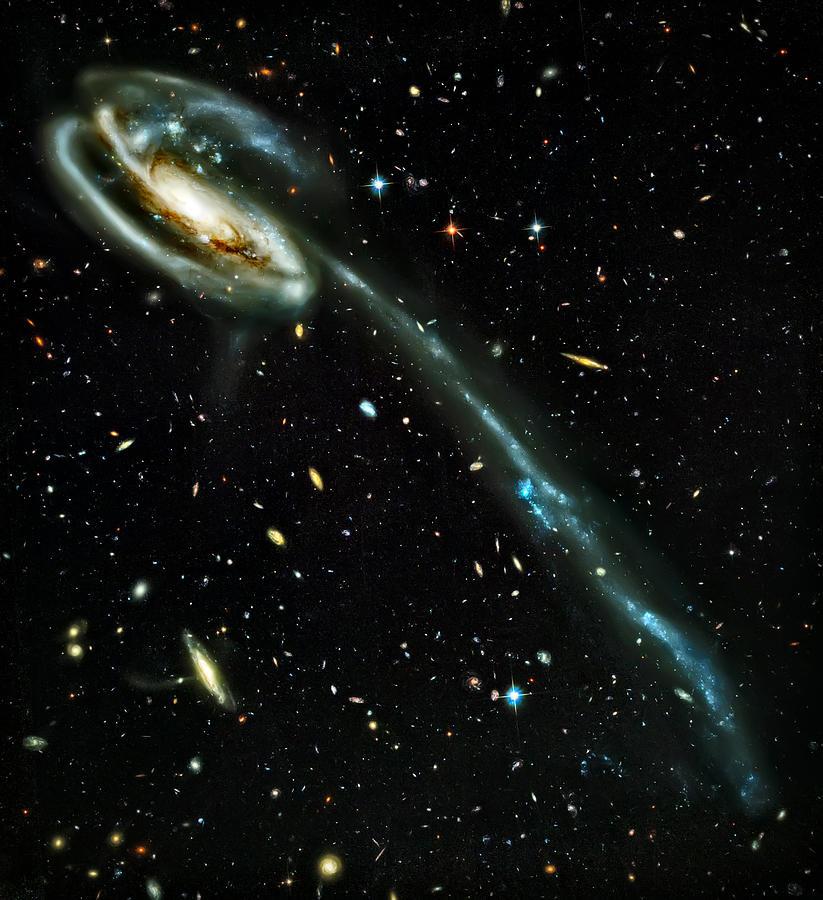 Universe Photograph - Tadpole Galaxy by The  Vault - Jennifer Rondinelli Reilly