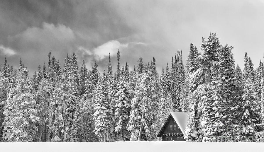 Black & White Photograph - Taking Refuge - Grand Teton by Sandra Bronstein
