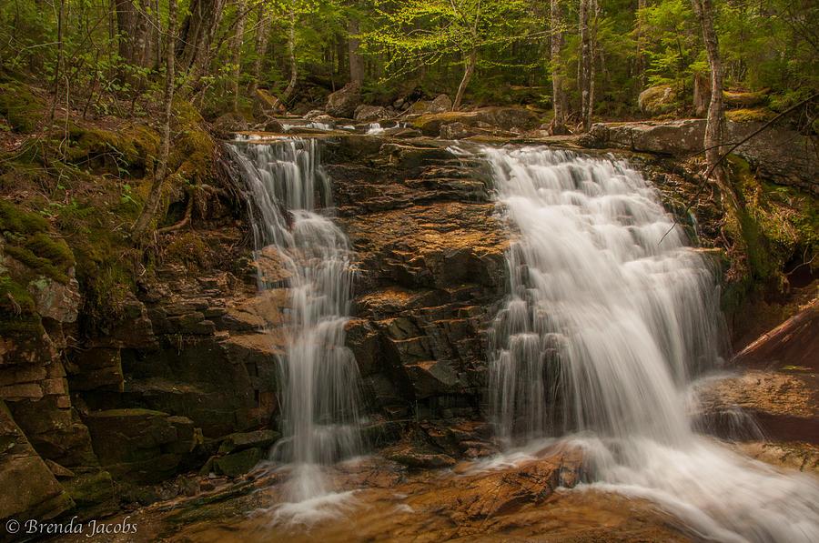 Tama Falls Photograph