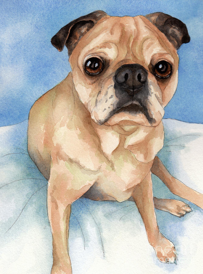 Tan And Black Pug Dog Painting