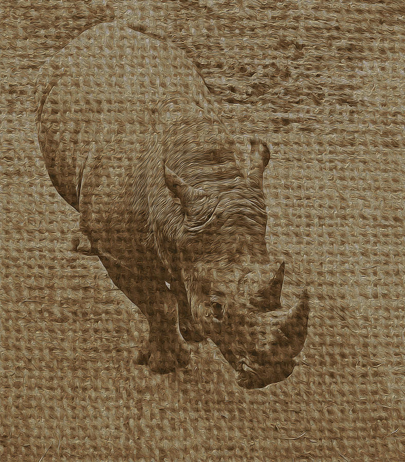 Tan Rhino Photograph  - Tan Rhino Fine Art Print