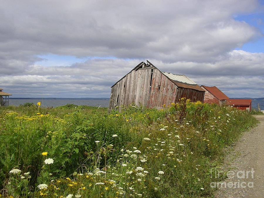 Tancook Island-nova Scotia Barn Photograph