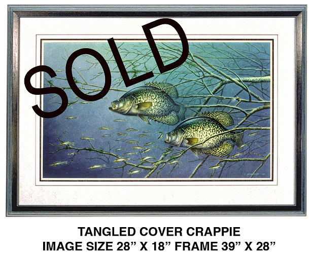 Tangled Cover Crappie Painting