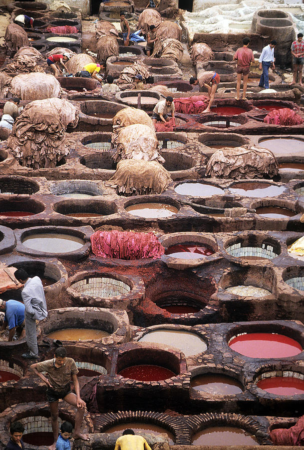 Tanning Vats In Morocco Photograph