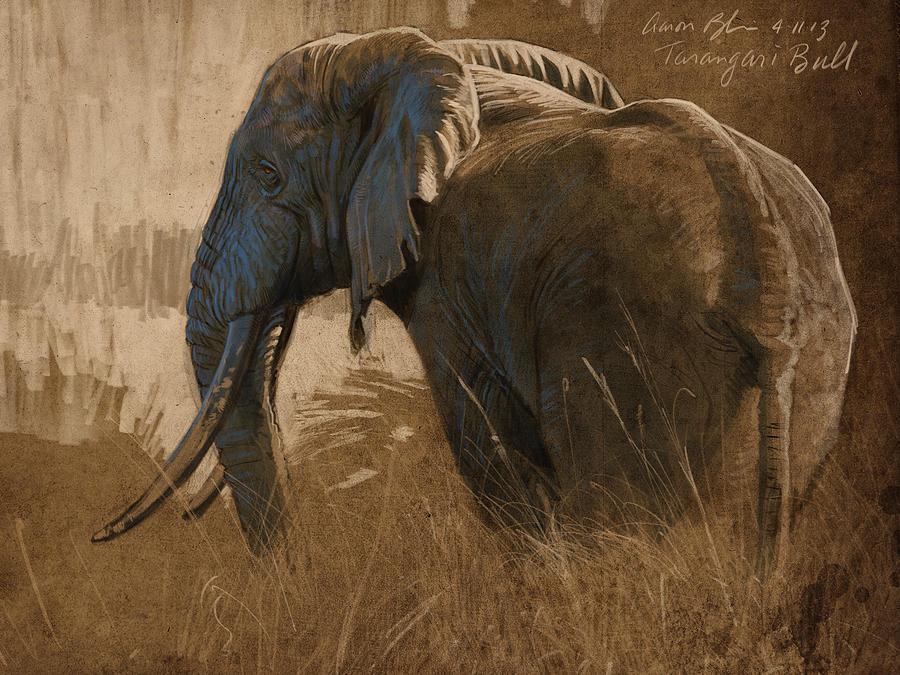 Tarangire Bull Digital Art