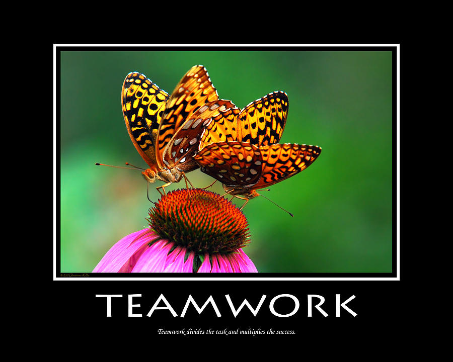 Teamwork Inspirational Motivational Poster Art Photograph  - Teamwork Inspirational Motivational Poster Art Fine Art Print