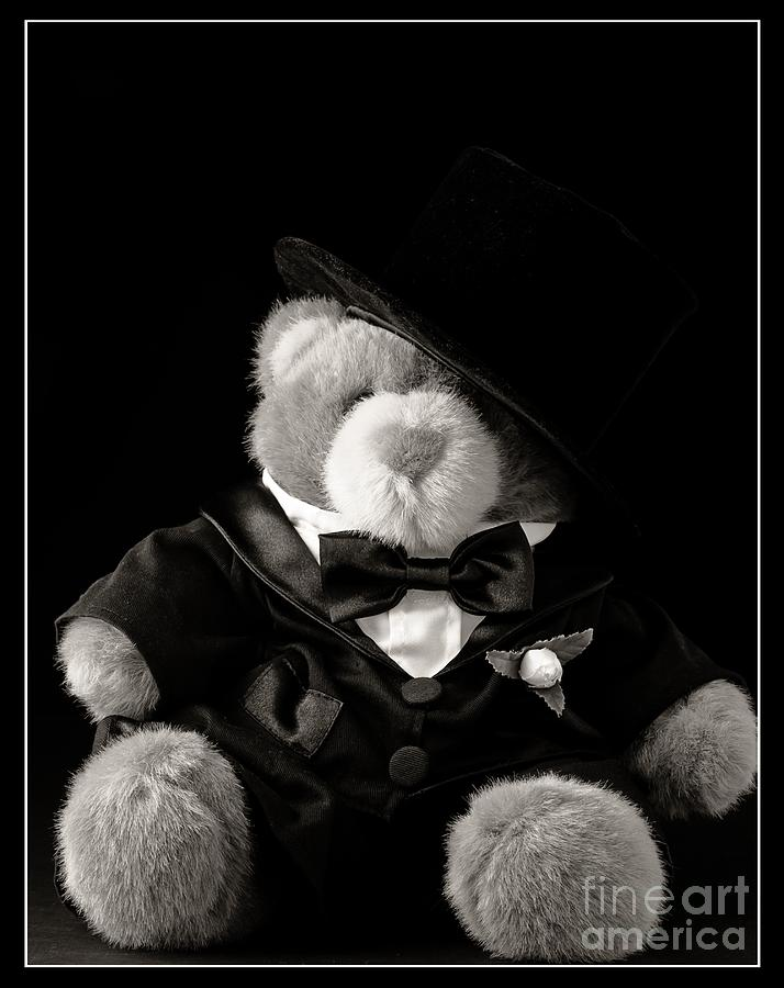 Teddy Bear Groom Photograph  - Teddy Bear Groom Fine Art Print