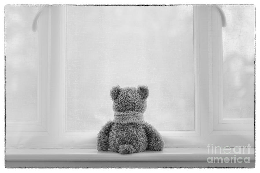 Teddy Bear Waiting Photograph  - Teddy Bear Waiting Fine Art Print
