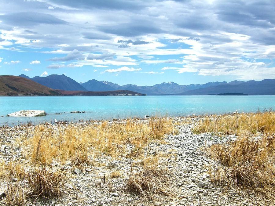 Online dating new york times-in-Lake Tekapo