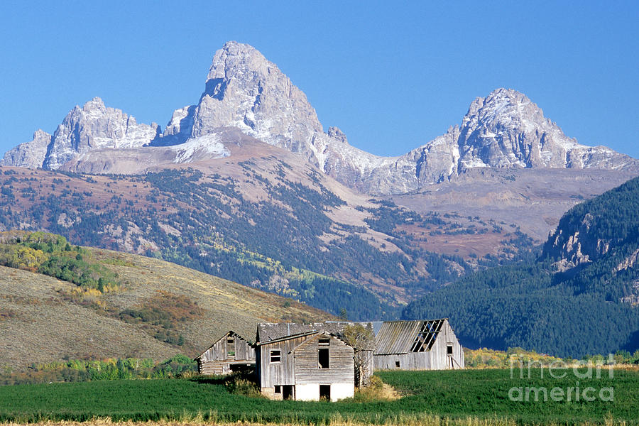 Teton Mountains Photograph By William H Mullins