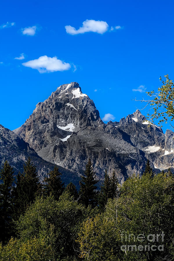 Teton View Photograph