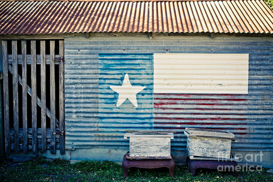 Texas Love Photograph  - Texas Love Fine Art Print
