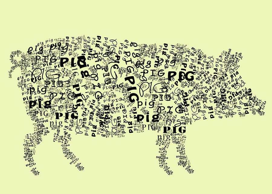 Text Pig Digital Art